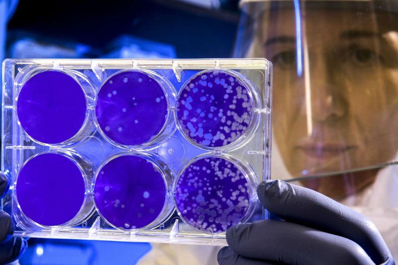 coronavirus,-13-gennaio:-in-piemonte-tasso-positivi/tamponi-al-5,8%.-oggi-1033-guariti