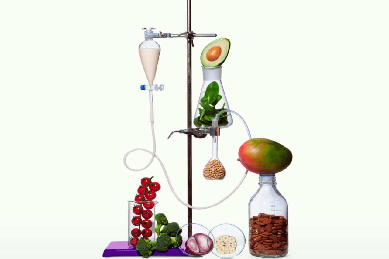 ecco-giuseppe,-l'intelligenza-artificiale-che-ci-insegnera-a-mangiare-vegano-ispirata-ad-arciboldo