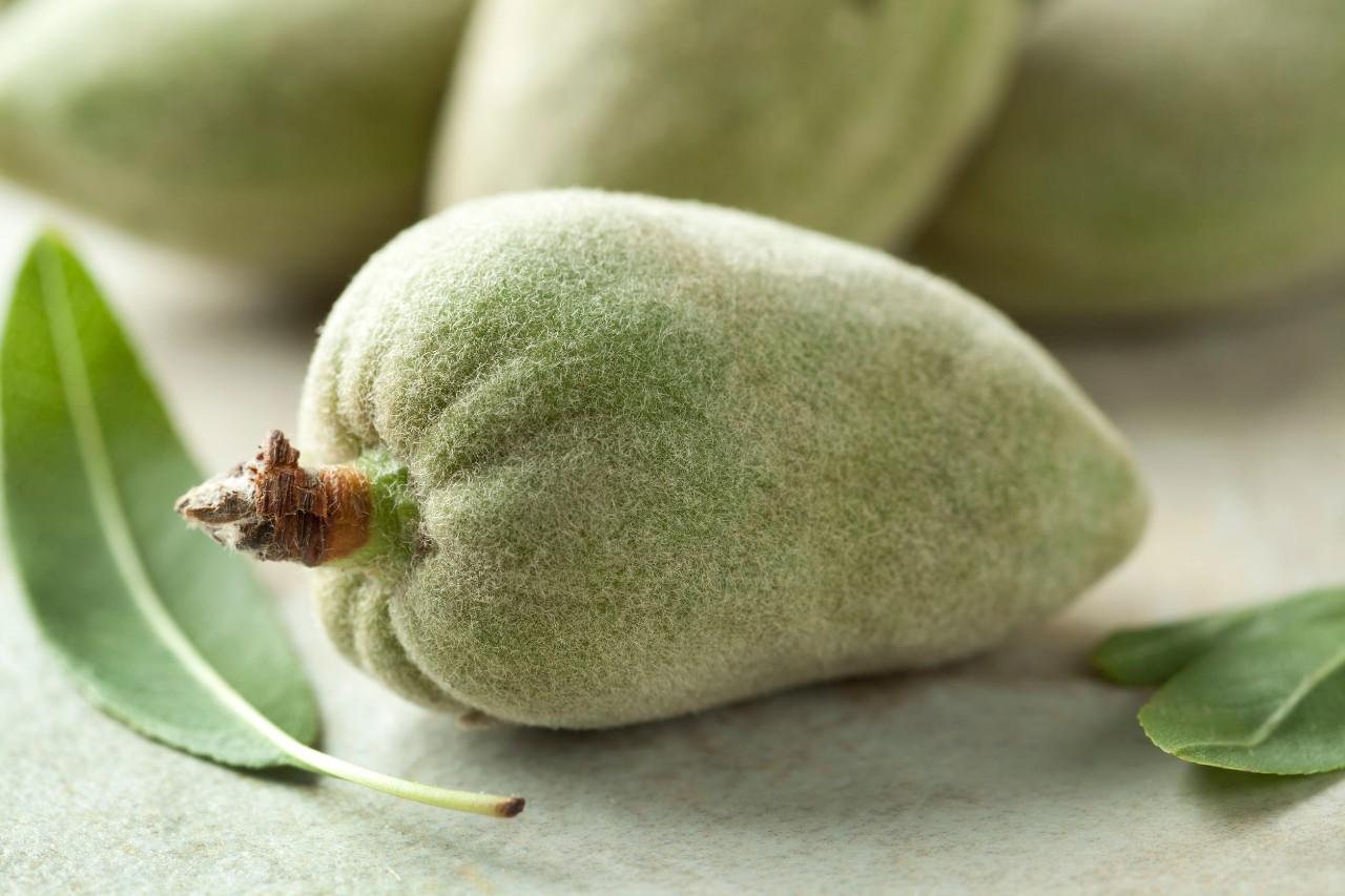 mandorle-verdi:-i-benefici-che-non-ti-aspetti-per-salute-e-bellezza