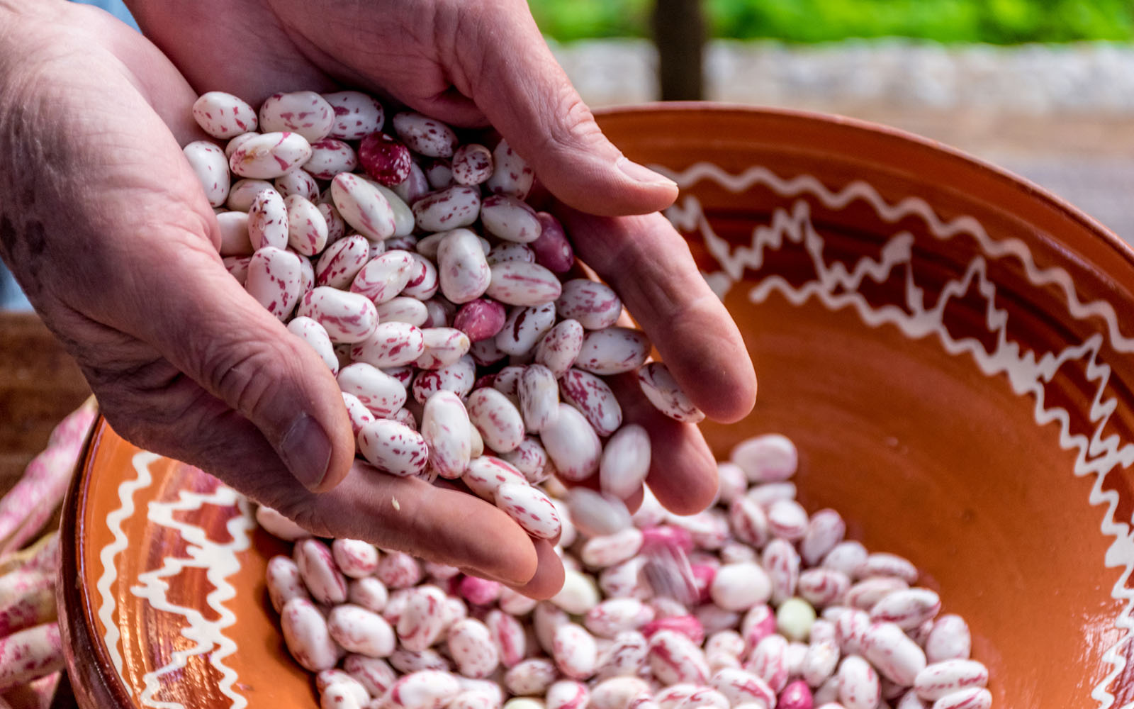 l'insalata-di-fagioli-alla-romana,-una-ricetta-autentica
