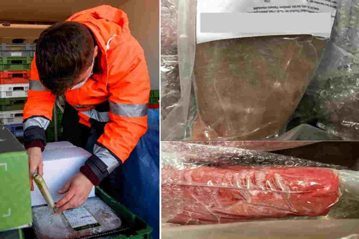 truffa-del-tonno-trattato-con-monossido-di-carbonio-per-mantenere-la-carne-rosa:-80-mila-tonnellate-sequestrate-in-belgio
