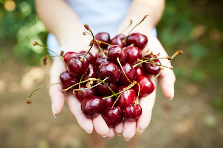 la-dieta-delle-ciliegie:-gusto-e-linea-vanno-d'accordo