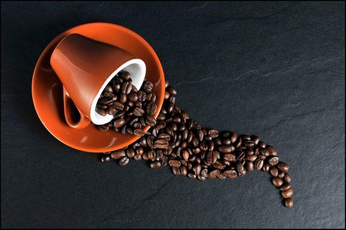 la-caffeina-protegge-la-nostra-pelle-dal-melanoma.-lo-studio-dell'iss