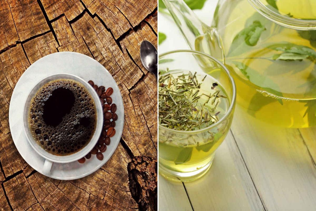 caffe-vs-te-verde:-differenze,-benefici-e-controindicazioni-delle-due-bevande-piu-amate-al-mondo
