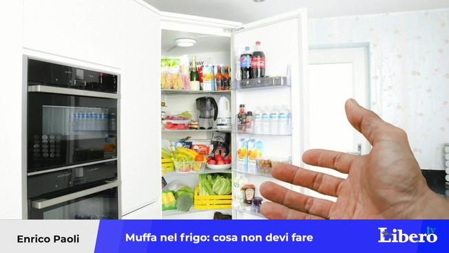 la-muffa-sugli-alimenti-in-frigorifero,-grave-rischio-per-la-salute:-l'errore-da-non-fare-mai